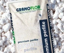 Premium perlit Gramoflor, 1L