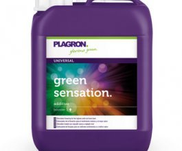 Plagron Green Sensation, 5L