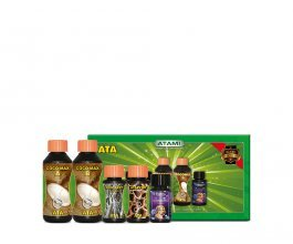 Atami Micro Kit ATA Coco, 700ml