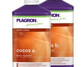 Plagron Cocos A+B, 1L